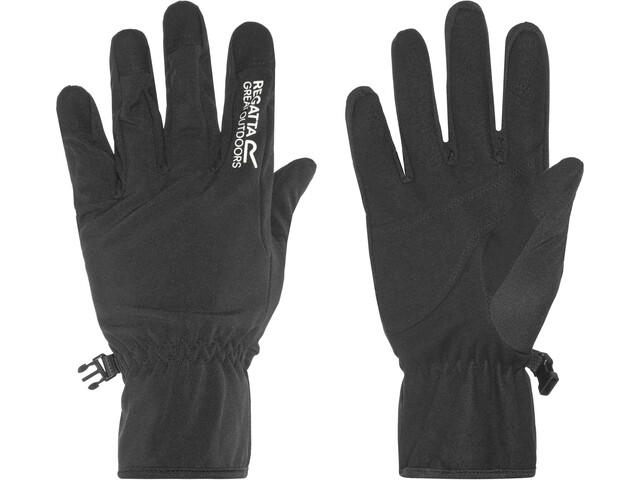Regatta Xert Softshell Gloves Herren black